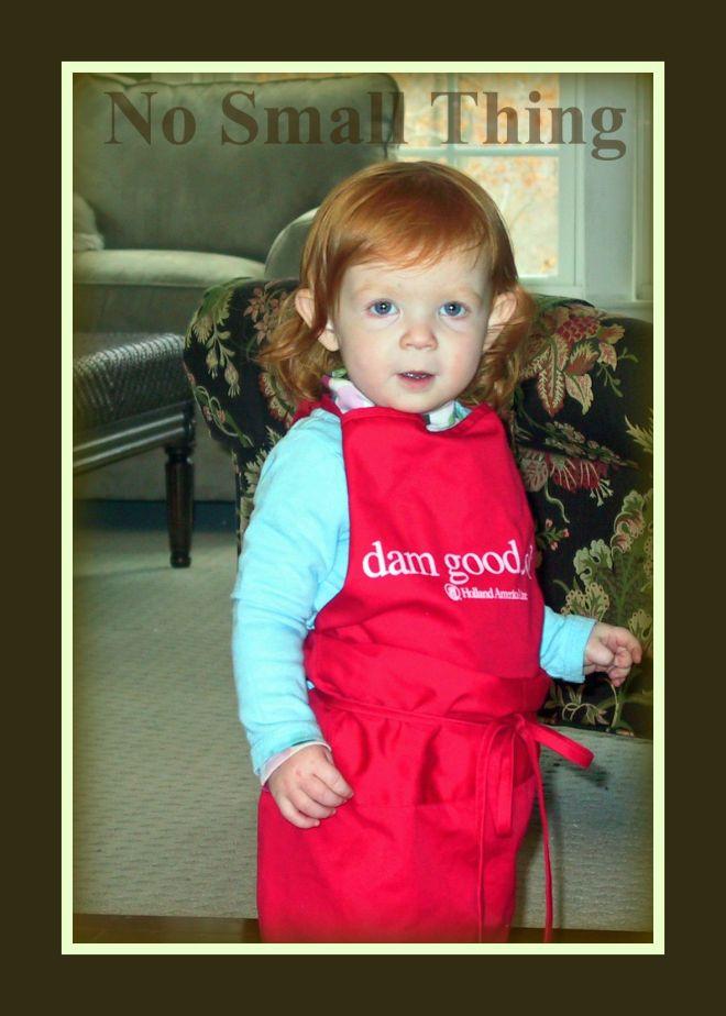 dam-good-cook-nst