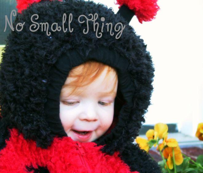 ella-in-ladybug-costume