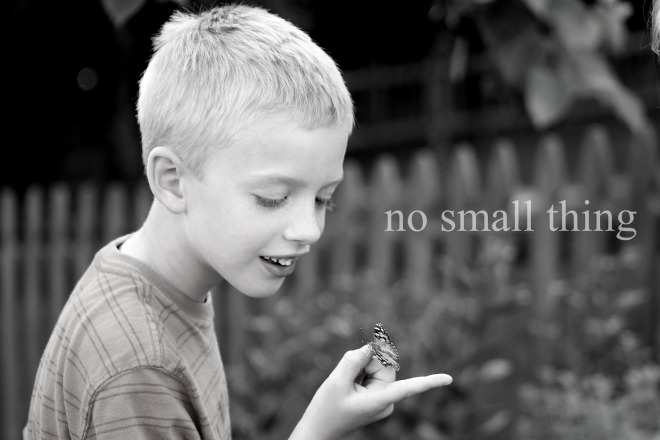 William with Butterfly B&W NST