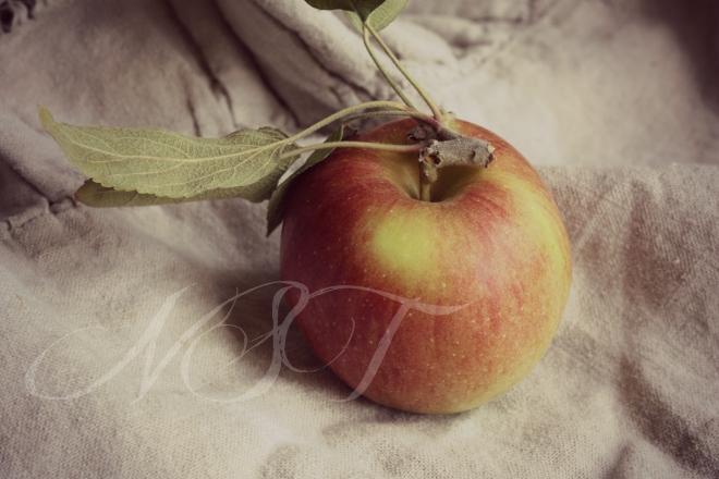 Apple NST